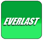 everlastgenerators.com