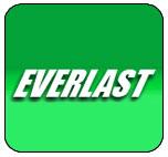 everlastgenerators.com