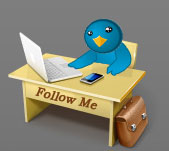 How to add beautiful customized Twitter Follow button to your Blog / Website