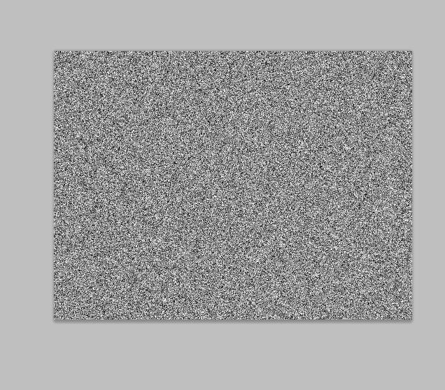 image-3188
